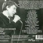 Chris Farlowe & The Thunderbirds - Buzz With The Fuzz